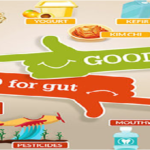Gut Bacteria and MOODDo gut bacteria really affect our mood?