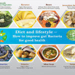 Diet and lifestyle – How to improve gut Bacteria for good health
